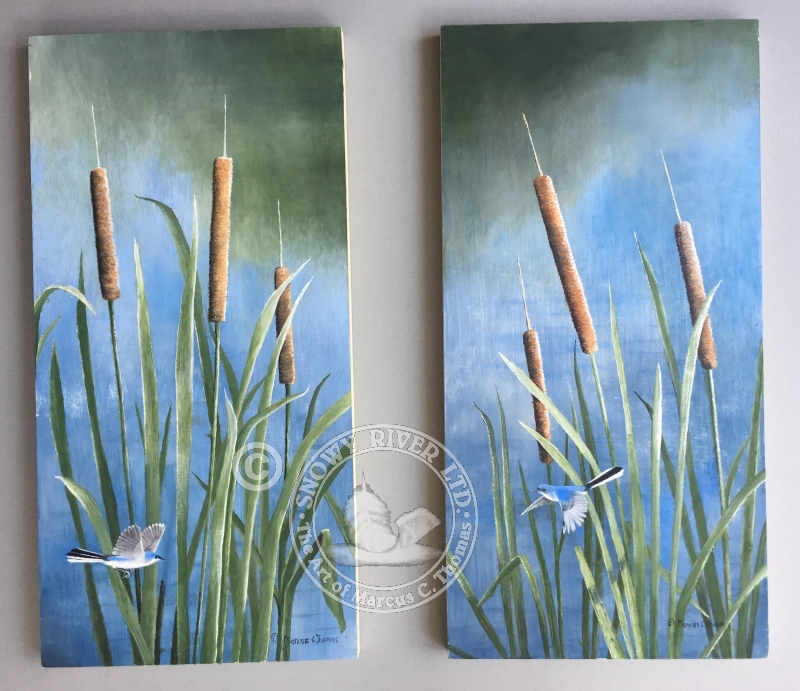 Cattail & Blue- Gray Gnatcatcher-Coming Soon
